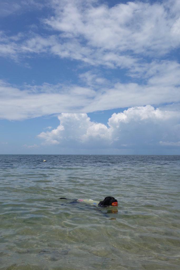 海は気持ちいいわぁ